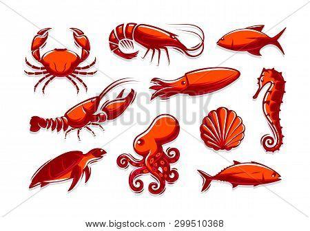 Set Of Sea Creatures Icons. Crab, Shrimp, Tuna, Squid, Lobster, Octopus, Shell, Turtle, Seahorse Col