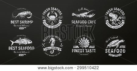 Seafood Icon. Sea Creatures, Animals Chalked On A School Blackboard, Seafood Silhouette, Retro Style