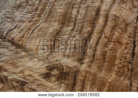 Wavy Woodgrain, Cut Wood Log With Unusual Grain, Horizontal Aspect