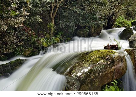 Winter; Water In Movement In A  Mountain Stream