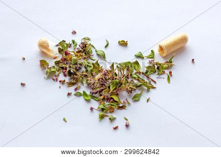 Nutritional Supplements Pills And Capsules On Dried Herbs Background. Alternative Herbal Medicine, N