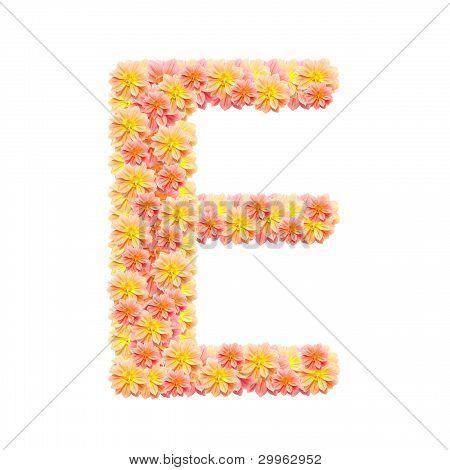 E,flower Alphabet Isolated On White