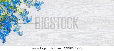 Panoramic Rustic Spring Light Background With Forget-me-not Flowers. Beautiful Floral Border Of Blue