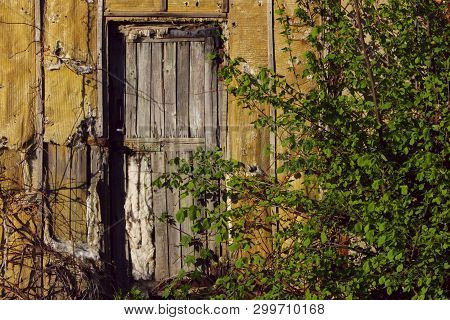 Abstract Strange Background. Old Wooden Door. Old Doors. Old House.
