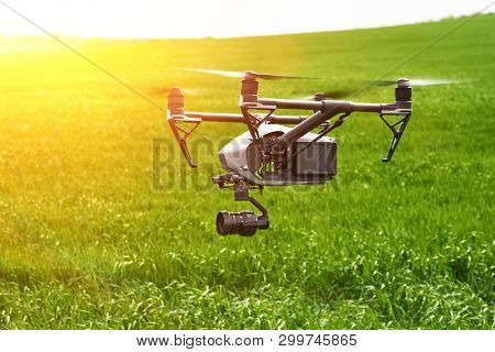 Quadcopter With Camera Flying Over Field. Photography Quadcopter Drone Hovering Over Young Green Spr