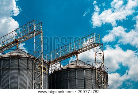 Agricultural Silo At Feed Mill Factory. Flat Silo For Store And Drying Grain, Wheat, Corn At Farm. S