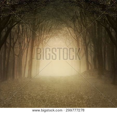 Enchanted Nature Series - Foggy Forest Golden Background - 3d Illustration