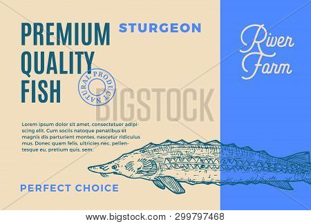 Premium Quality Sturgeon. Abstract Vector Fish Packaging Design Or Label. Modern Typography And Hand