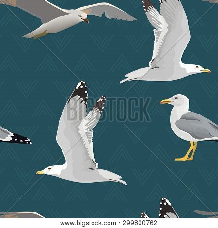 Sea Gulls Seamless Pattern. Hovering, Soaring, Standing, With Folded Wings, Resting, Curious. Flying