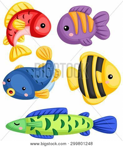 A Vector Collection Of Many Fishes With Different Colors