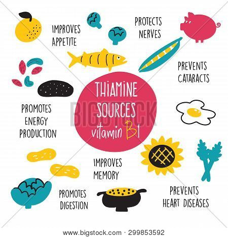 Vitamin B 1 Food Sources, Thiamine. Vector Cartoon Illustration And Information About Health Benefit