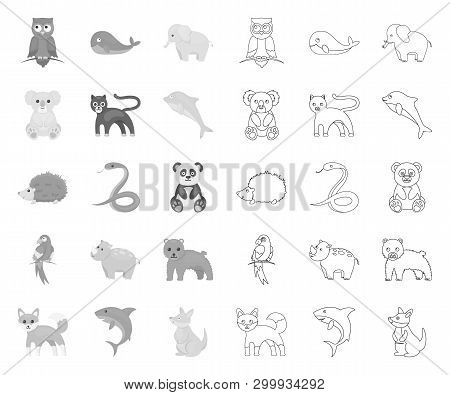 An Unrealistic Animal Mono, Outline Icons In Set Collection For Design. Toy Animals Vector Symbol St