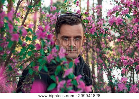 Portrait of young beauty woman in purple rhododendron flowers. Blooming rhododendron - maralnik in Altai mountain forest in the spring.