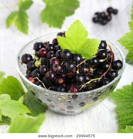 Fresh blackcurrant in glass bowl