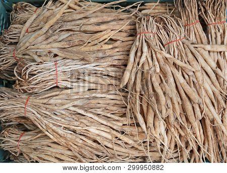 A Stemona Tuberosa Lour Roots. Cancer Treatment.