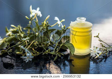 Close Up Of  Essential Oil Of Indian Jasmine Flower Or Juhi Or Jasminum Auriculatum Isolated On Whit