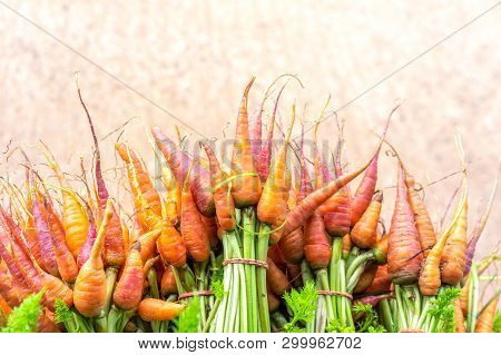 Fresh Carrots Bunch In The Market For Sale In Local Market At Phu Tub Berk. Organic Carrots In Thail