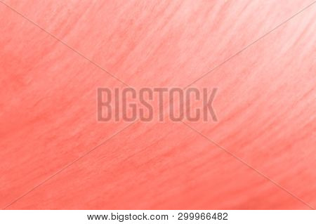 Trendy Living Coral Colored Floral Background. Seamless Floral Texture With Color Gradient And Copys