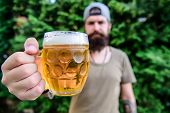 Creative young brewer. Distinct beer culture. Hipster brutal bearded man hold mug cold fresh beer. Man enjoying beer in summer. Alcohol and bar concept. Craft beer is young, urban and fashionable poster