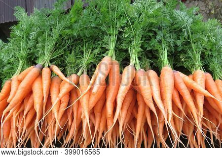 Lot Of Fresh Carrots Image,  This Carrots Have Been Brought To The Market For Sale, Image Click From