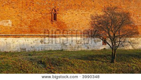 Autumn Ancient Walls.