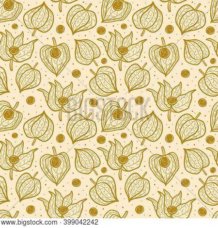 Physalis, Winter Cherry Seamless Pattern, Texture, Background. Floral Packaging Design. Line Art, Li