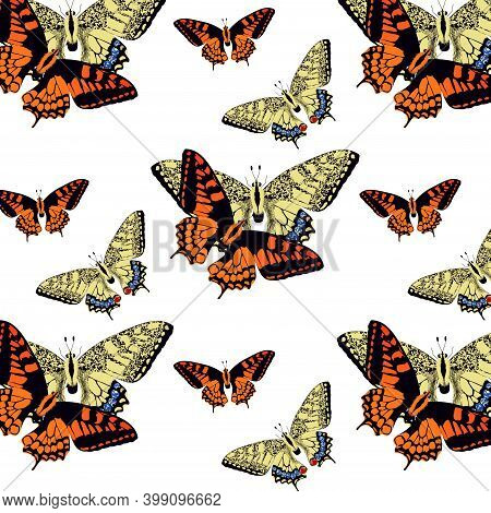 Seamless Pattern With Bright Watercolor Aquarell Painted Red And Yellow Butterflies On White Backgro