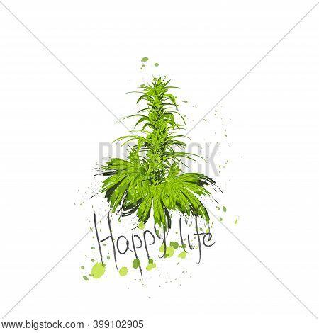 Cannabis Bush Of Hemp Or Marijuana Or Hashish Or Marijuana Branch, Cannabis Plant. Happy Life Text L