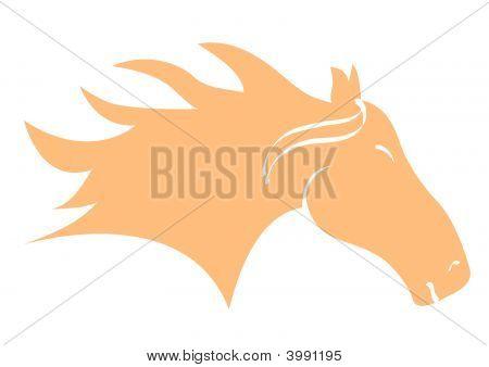 Horse Head Orange