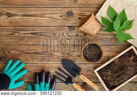 Gardening Tools, Digging Gloves, Coconut Fiber Pots And Soil On Wooden Table. Cultivation And Caring