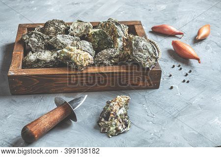 Oysters In A Wooden Tray And Shallot