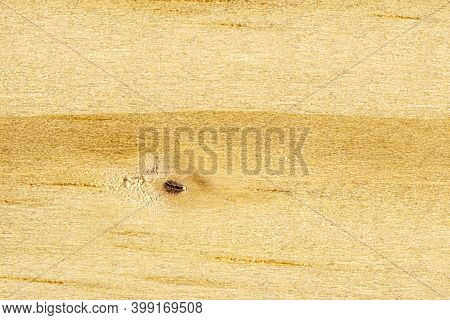 Background Made From A Macro Shot Of A Wooden Plank, Covered With Wooden Knots.