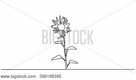 Continuous Line Sunflower Logo. Sunflower Single Line Vector Illustration. One Single Line Drawing O
