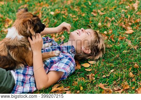 Boy Hugging Dog And Plyaing With In The Fall, City Park