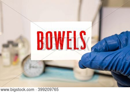 Bowel Word In A Dictionary. Bowel Concept