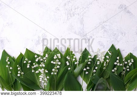Spring Season Background, Fresh Lily Of The Valley Flower On White Background. Copy Space, Mother Da