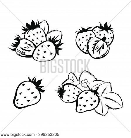 Illustration Of Set Strawberry In Vector. Hand Drawn Cartoon Illustration Of Strawberry Icon Isolate