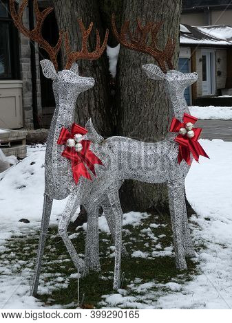 Deer In Front Yard As Christmas Decoration