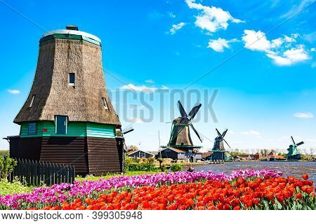 Dutch Typical Landscape. Traditional Old Dutch Windmills With House, Blue Sky Near River With Tulips