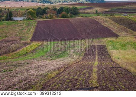 Simple Country Landscape With Plowed Fields And Blue Skies. Ukraine