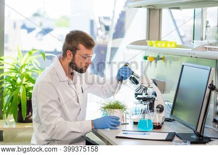 Scientist Working In Lab. Doctor Making Microbiology Research. Laboratory Tools: Microscope, Test Tu