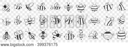 Bees Doodle Set. Collection Of Hand Drawn Various Striped Bees With Wings With Different Patterns Fl