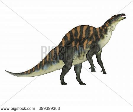 Ouranosaurus Dinosaur Eating Up Isolated In White Background - 3d Render