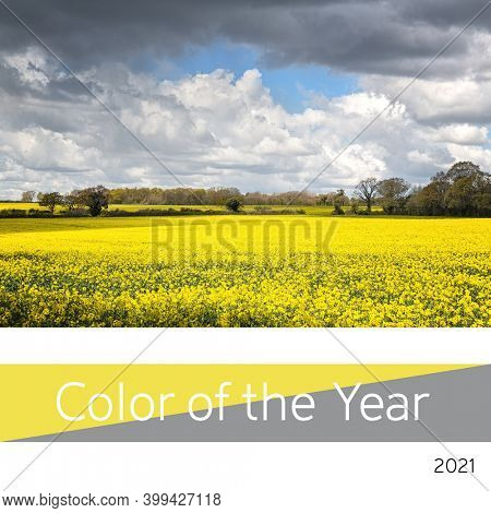 Color of the year 2021, Ultimate Gray and Illuminating yellow. Represented by a field of yellow canola flowers with cloudy sky. Hampshire, UK