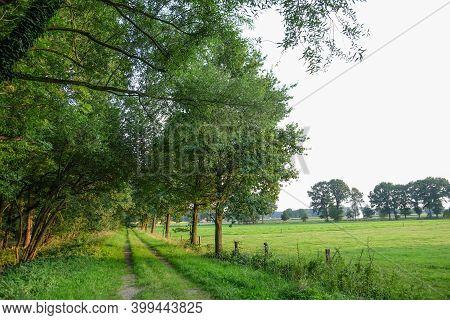 spring time in the western german muensterland