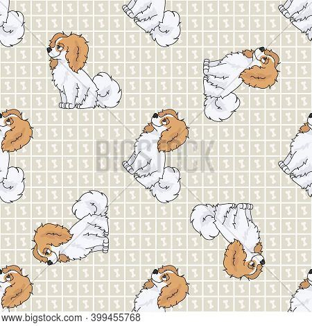 Cute Cartoon Papillon Sitting Vector Clipart. Pedigree Kennel Dog Breed For Obedience Training. Pure
