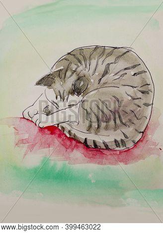 Cute European Cat Art , Colorful Watercolor Illustration