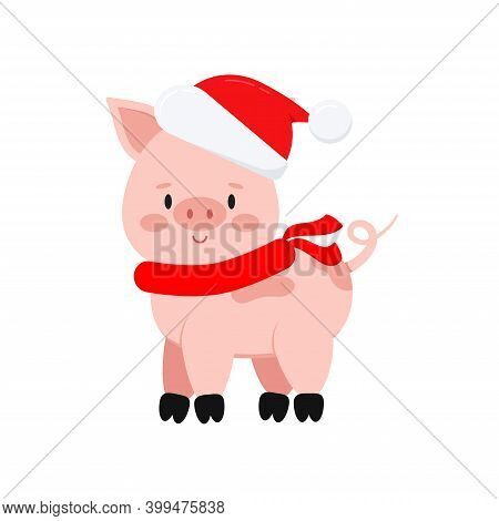Cute Christmas Pig Vector Icon Isolated On White Background. Farm Animal Happy Pink Pig With Curly T
