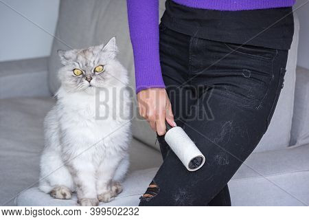 Woman Cleaning Clothes With Clothes Roller, Lint Roller Or Sticky Roller From Cats Hair. Clothes In