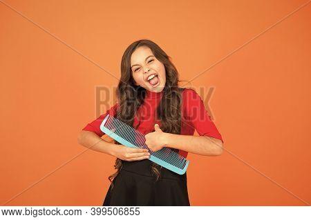Hairbrush For Tangled Hair. Having Fun. Perfect Hair. Large Comb. Girl Gorgeous Long Hair Hold Big C